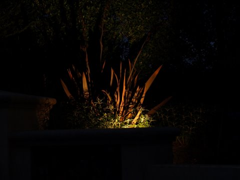 Conejo Valley Landscape Lighting Dramatic Lighting