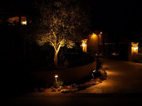 Conejo Valley Landscape Lighting Driveway