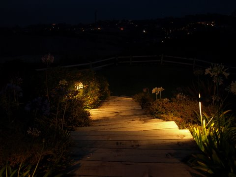 Conejo Valley Landscape Lighting Steps