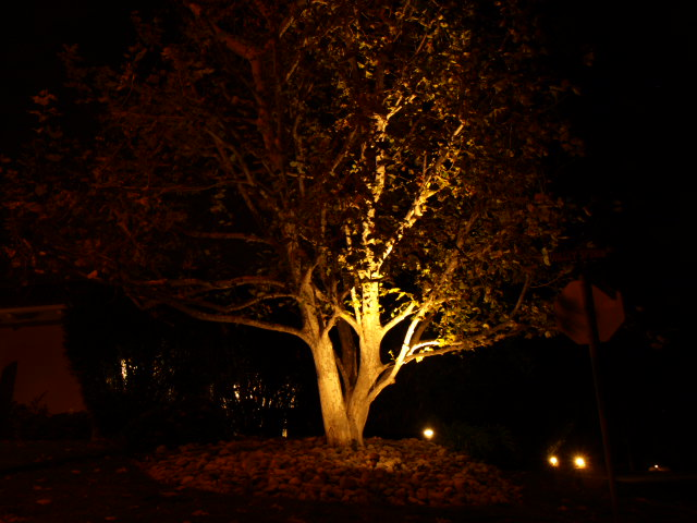 Conejo Valley Landscape Lighting Landscape Lighting