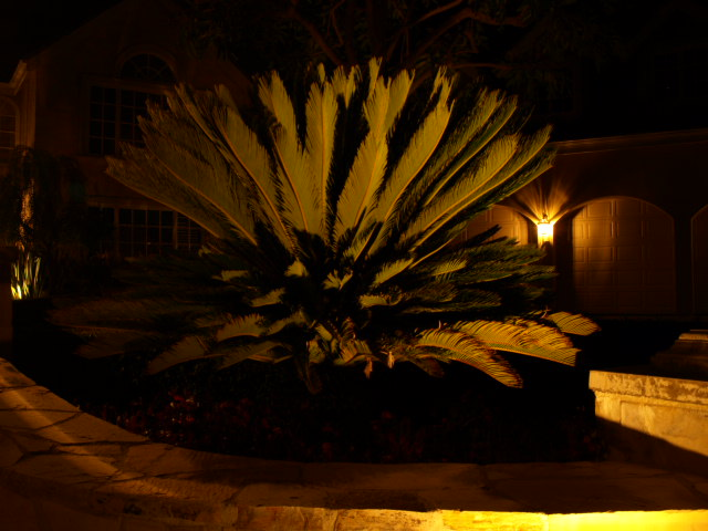 Conejo Valley Landscape Lighting